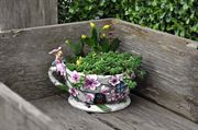 Cherry Blossom Teacup Planter- Fiddlehead Miniature Gardens