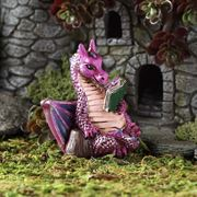 Fiddlehead fairy gardens- reading dragon